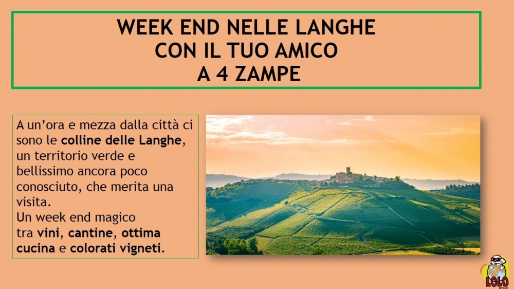Weekend nelle langhe! - LOLO Groups