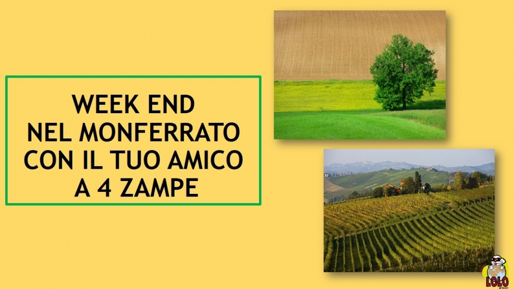 Weekend Monferrato - LOLO Groups